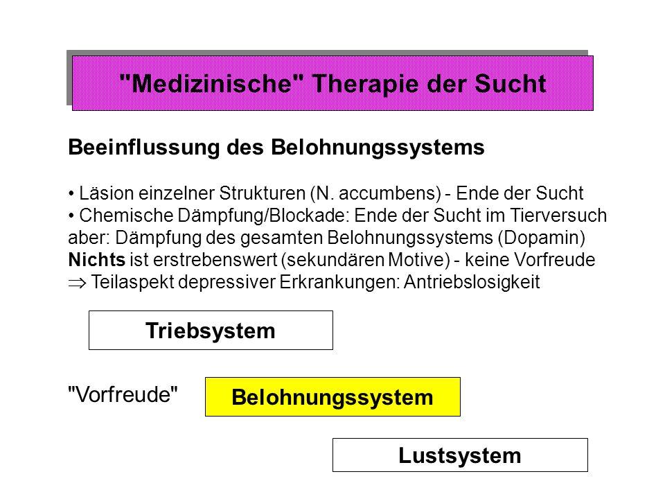 Medizinische Therapie der Sucht