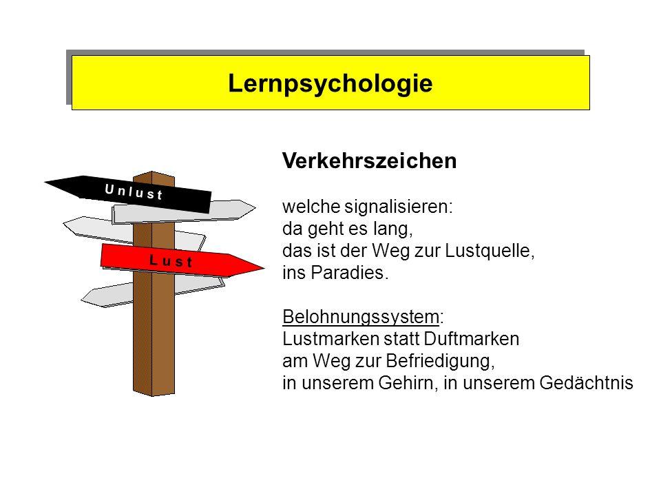 Lernpsychologie Verkehrszeichen welche signalisieren: da geht es lang,