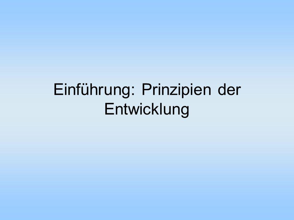 Einführung: Prinzipien der Entwicklung