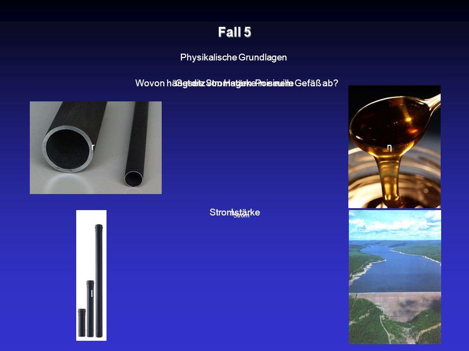 Fall 5 Physikalische Grundlagen