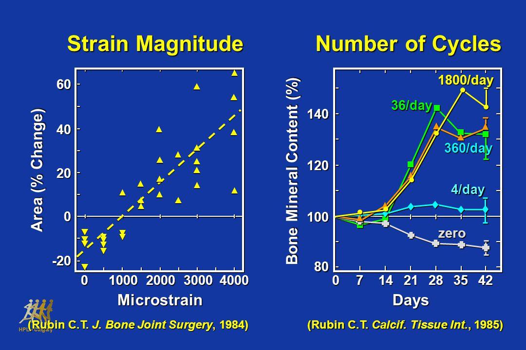 Bone Mineral Content (%)