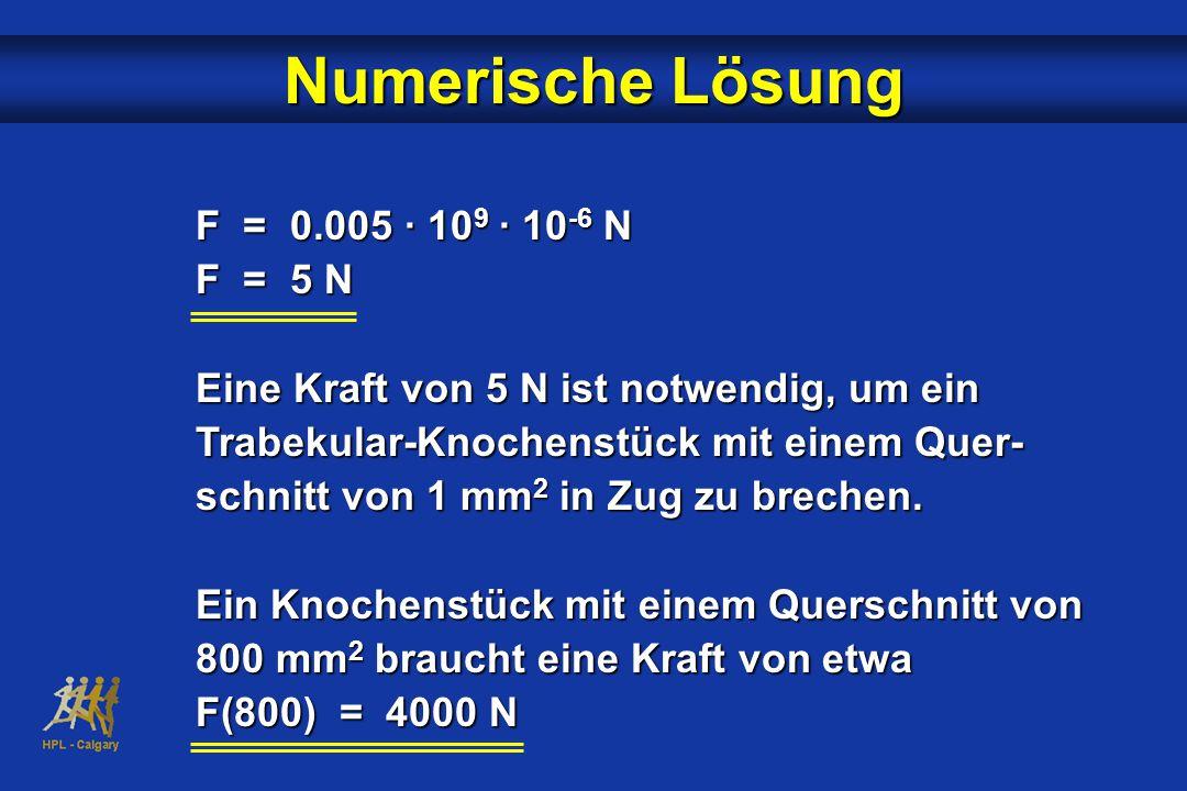 Numerische Lösung F = 0.005 · 109 · 10-6 N F = 5 N