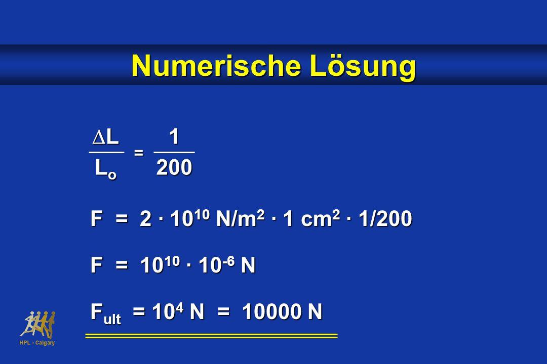 Numerische Lösung DL Lo 1 200 F = 2 · 1010 N/m2 · 1 cm2 · 1/200