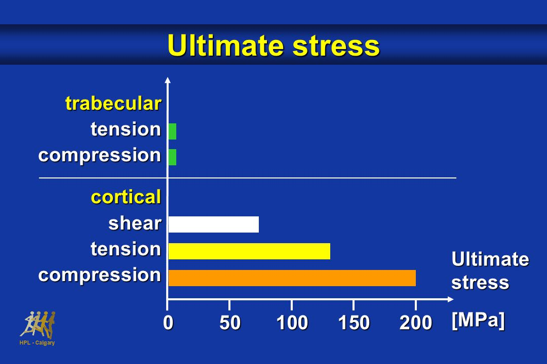 Ultimate stress trabecular tension compression cortical shear