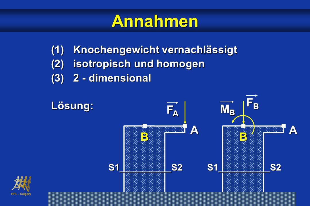 Annahmen FB FA B A MB A B (1) Knochengewicht vernachlässigt