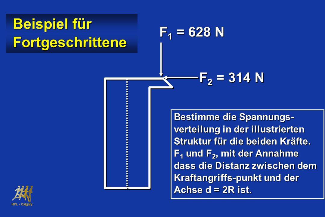 Beispiel für Fortgeschrittene F1 = 628 N F2 = 314 N