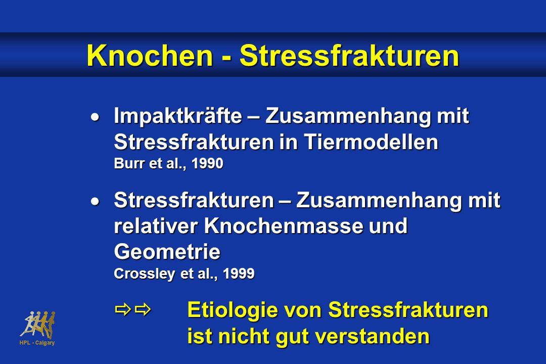 Knochen - Stressfrakturen