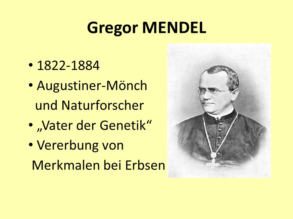 Gregor MENDEL 1822-1884 Augustiner-Mönch und Naturforscher