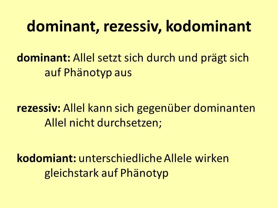 dominant, rezessiv, kodominant