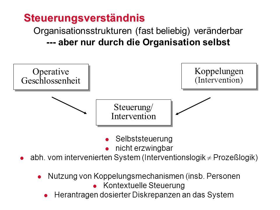 Steuerungsverständnis