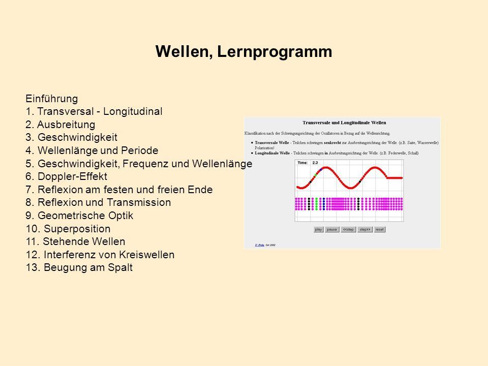 Wellen, Lernprogramm Einführung 1. Transversal - Longitudinal