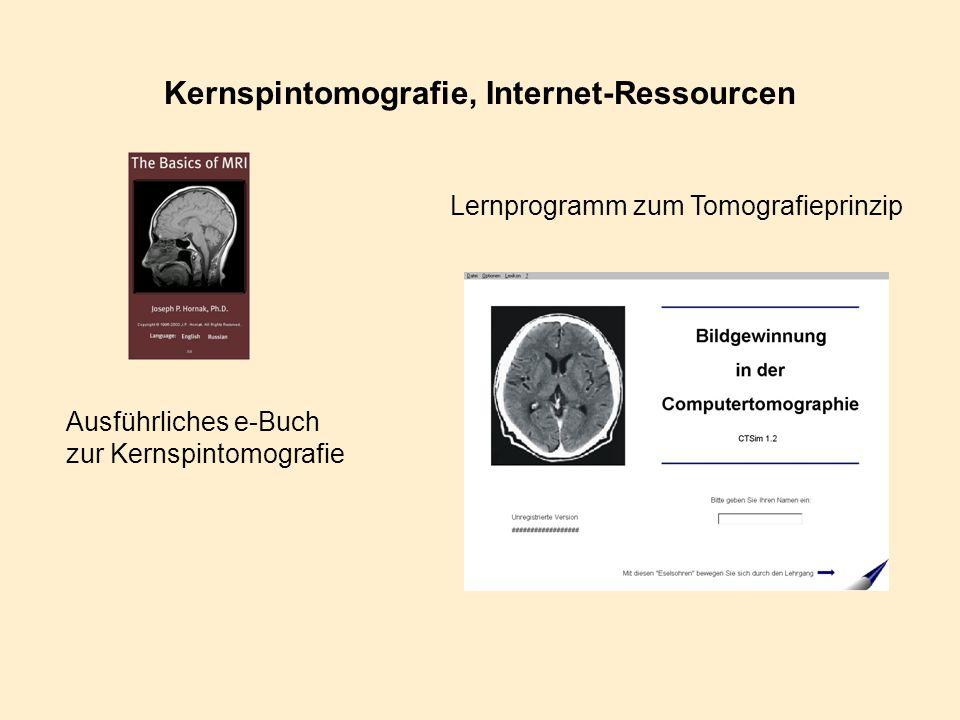 Kernspintomografie, Internet-Ressourcen
