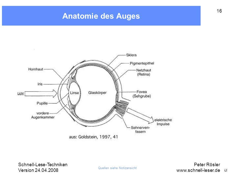 Anatomie des Auges Peter Rösler www.schnell-leser.de