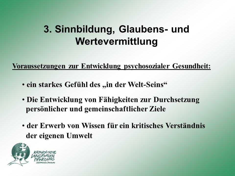 3. Sinnbildung, Glaubens- und Wertevermittlung