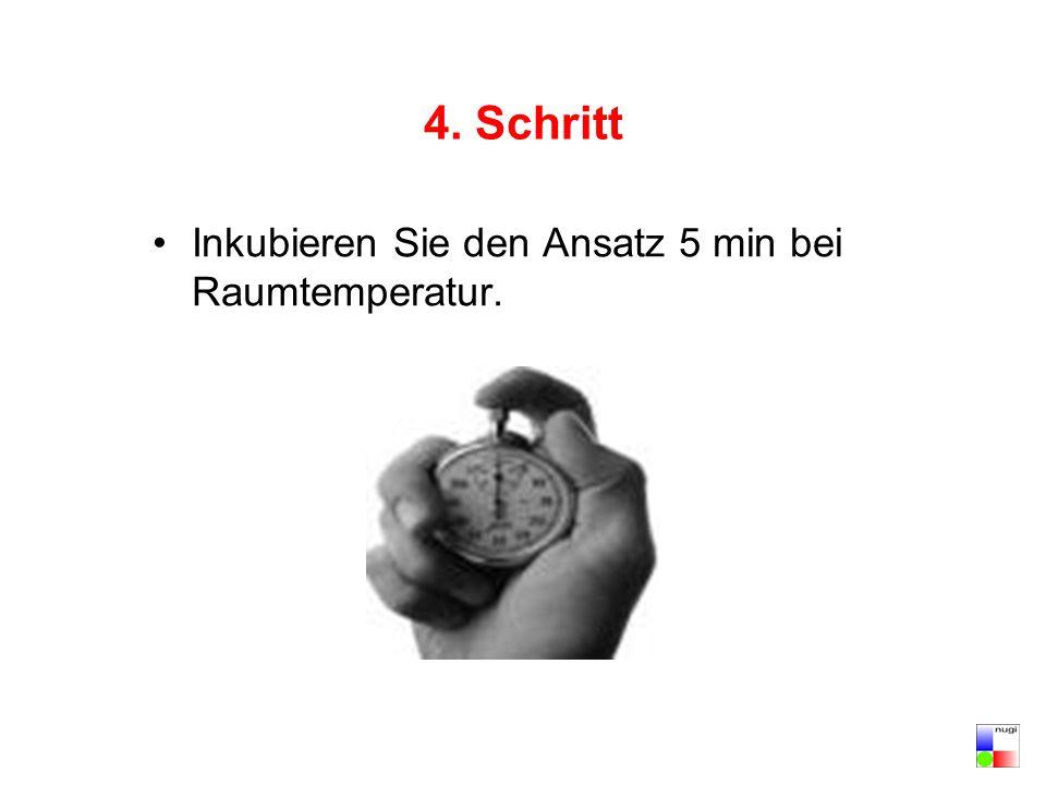 4. Schritt Inkubieren Sie den Ansatz 5 min bei Raumtemperatur.