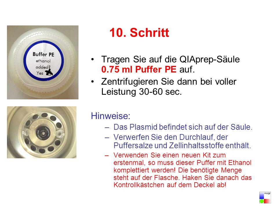 10. Schritt Tragen Sie auf die QIAprep-Säule 0.75 ml Puffer PE auf.