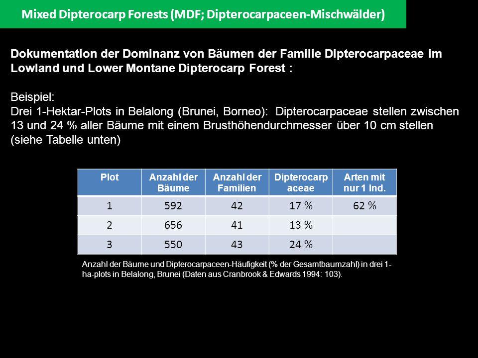 Mixed Dipterocarp Forests (MDF; Dipterocarpaceen-Mischwälder)