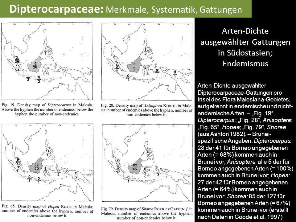Arten-Dichte ausgewählter Gattungen in Südostasien; Endemismus