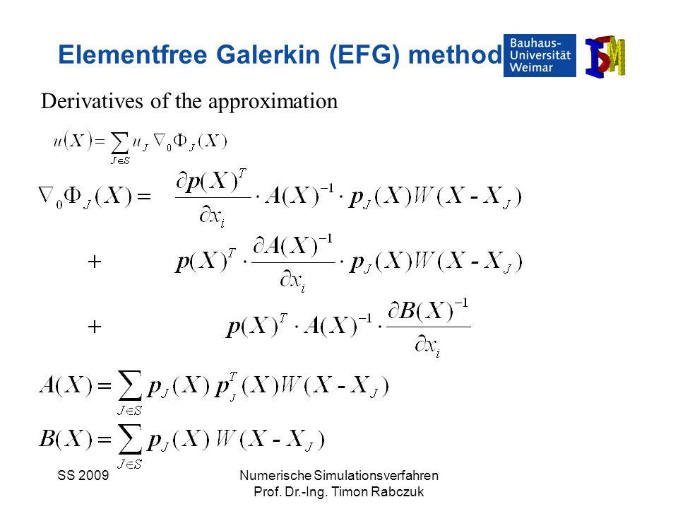 Elementfree Galerkin (EFG) method