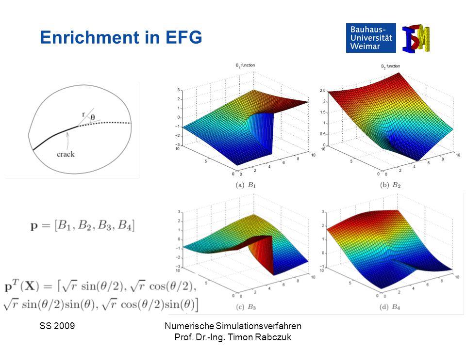 Enrichment in EFG SS 2009 Numerische Simulationsverfahren