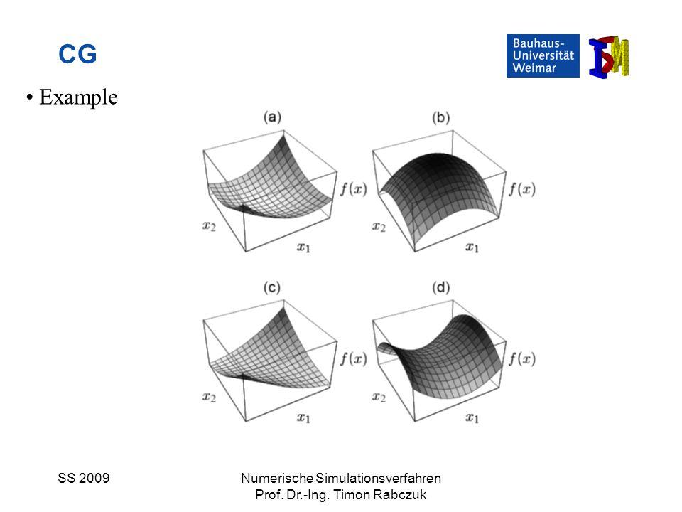 CG Example SS 2009 Numerische Simulationsverfahren
