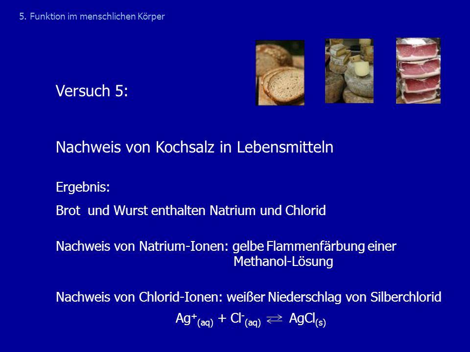 Nachweis von Kochsalz in Lebensmitteln