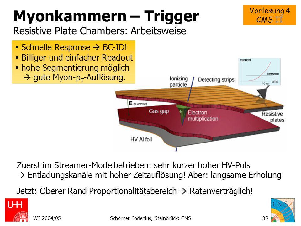 Myonkammern – Trigger Resistive Plate Chambers: Arbeitsweise