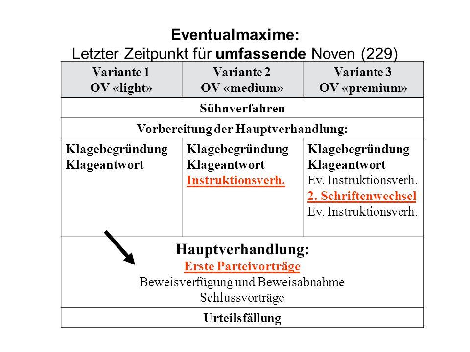 Eventualmaxime: Letzter Zeitpunkt für umfassende Noven (229)