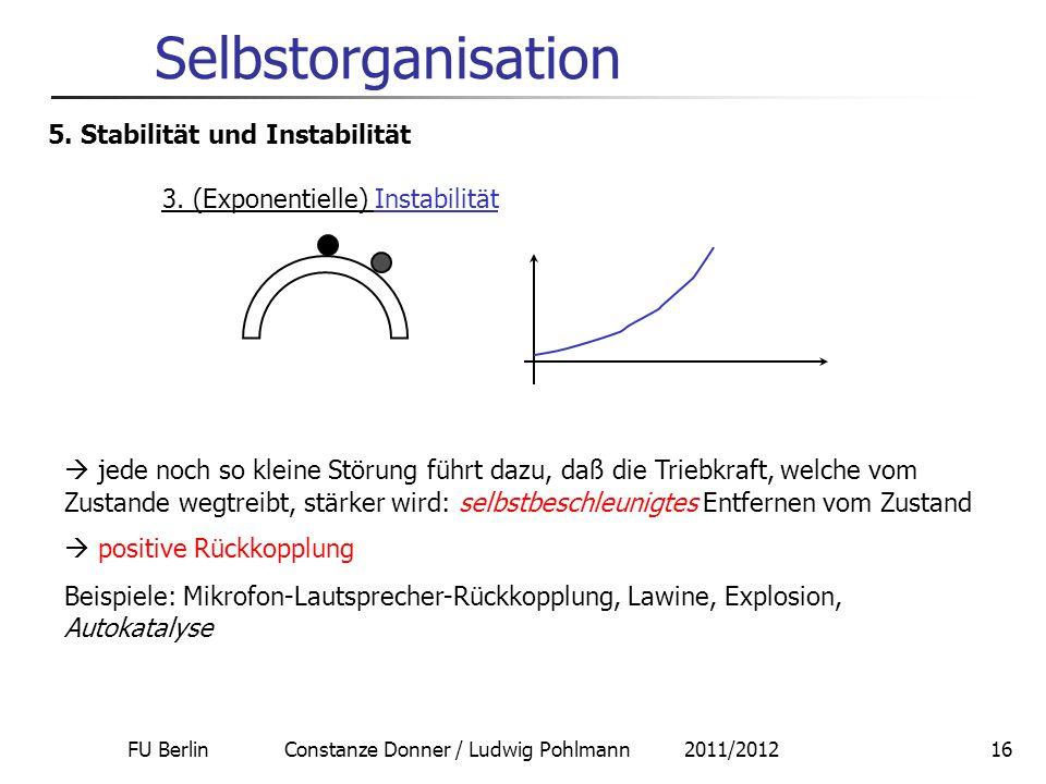 Selbstorganisation 5. Stabilität und Instabilität
