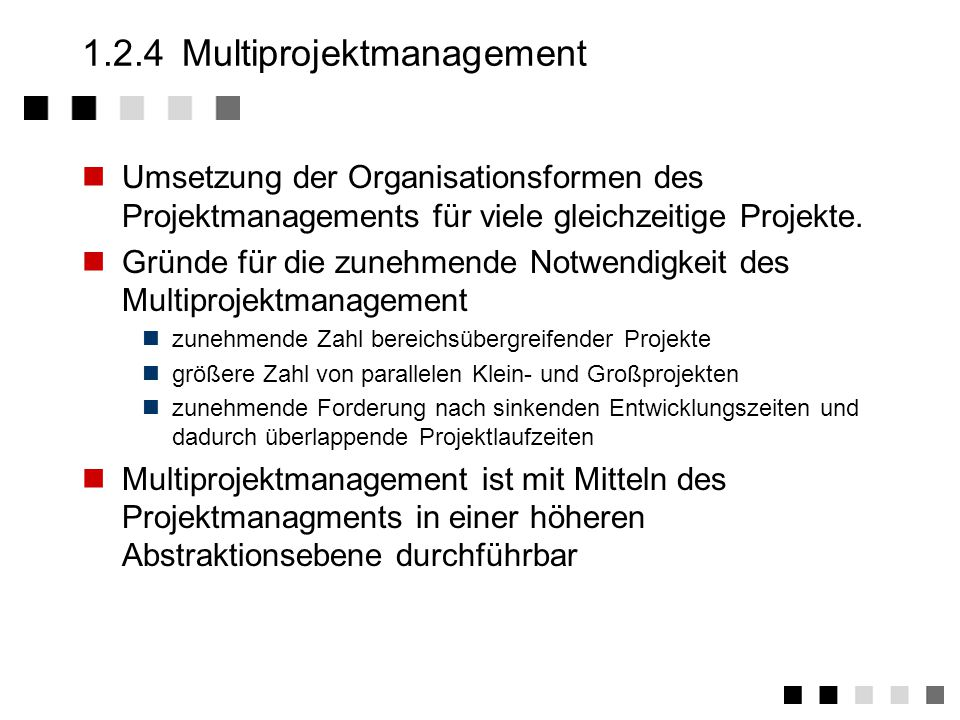 1.2.4 Multiprojektmanagement