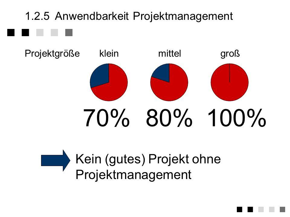 1.2.5 Anwendbarkeit Projektmanagement
