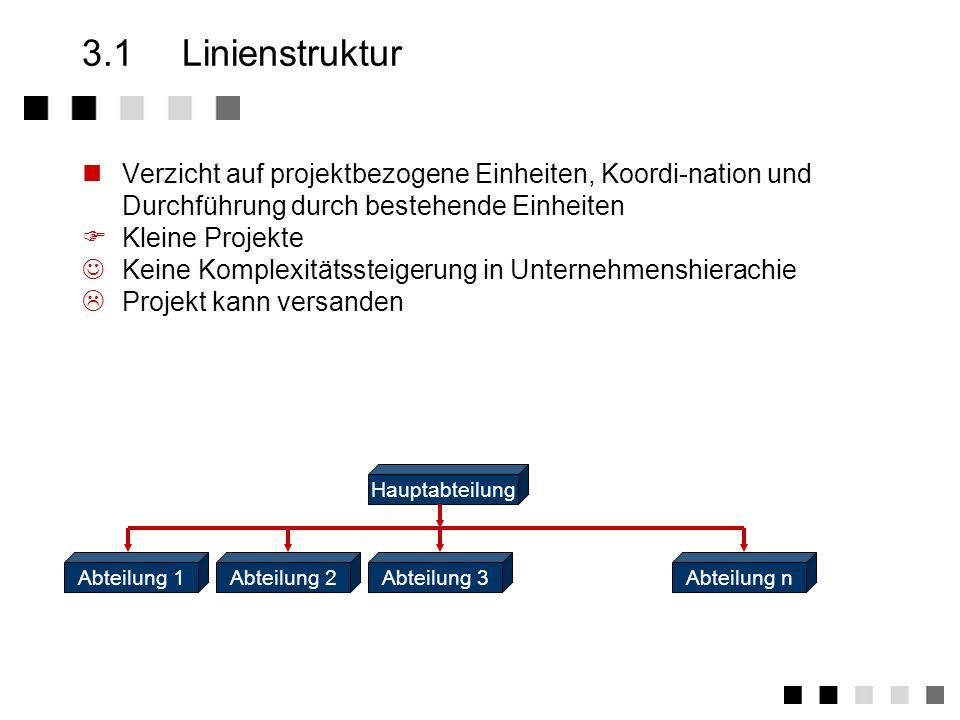 3.1 Linienstruktur Verzicht auf projektbezogene Einheiten, Koordi-nation und Durchführung durch bestehende Einheiten.