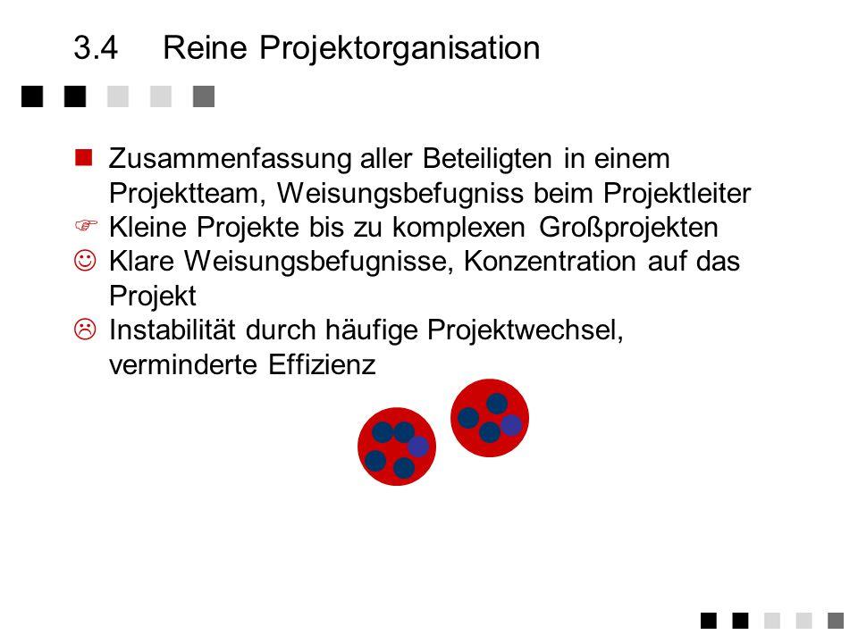 3.4 Reine Projektorganisation