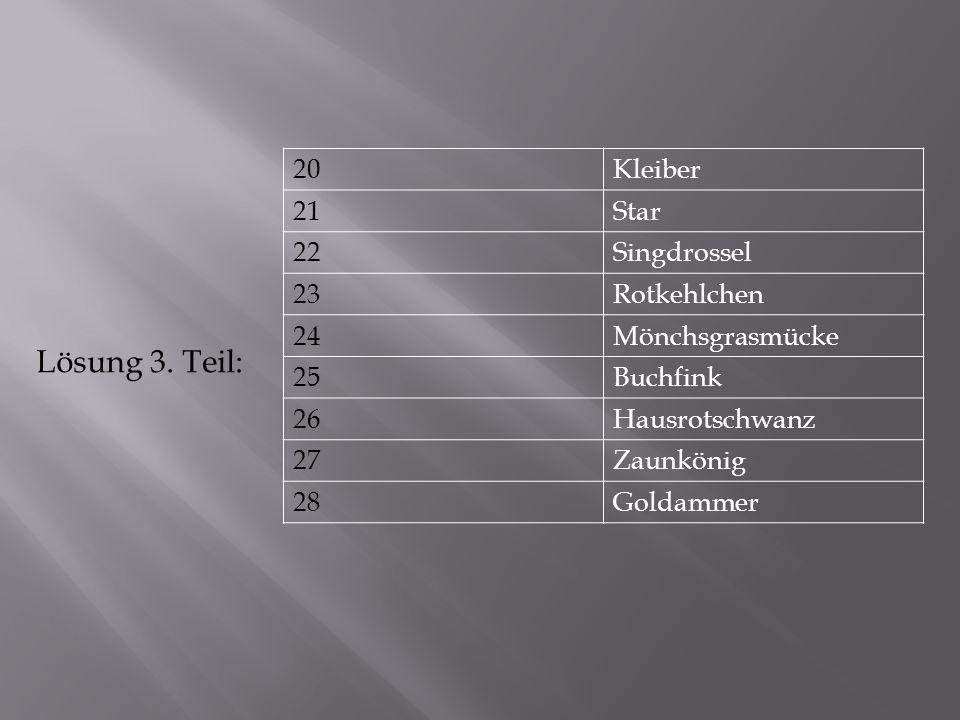 Lösung 3. Teil: 20 Kleiber 21 Star 22 Singdrossel 23 Rotkehlchen 24