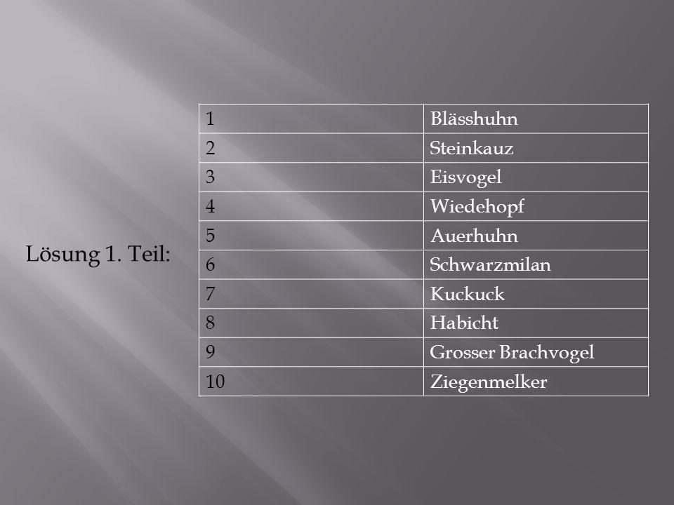 Lösung 1. Teil: 1 Blässhuhn 2 Steinkauz 3 Eisvogel 4 Wiedehopf 5
