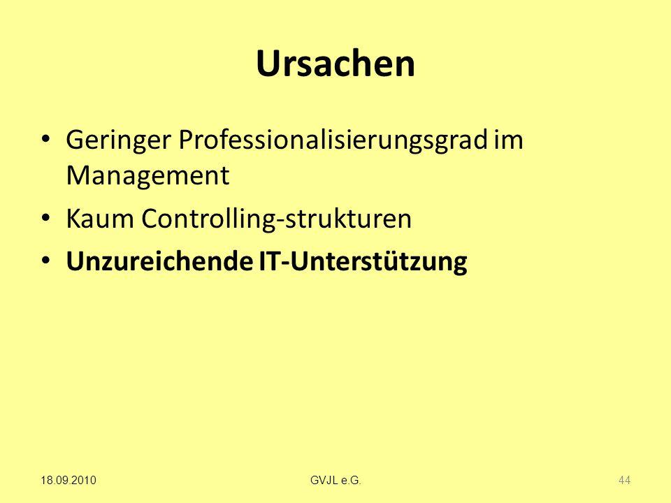 Ursachen Geringer Professionalisierungsgrad im Management