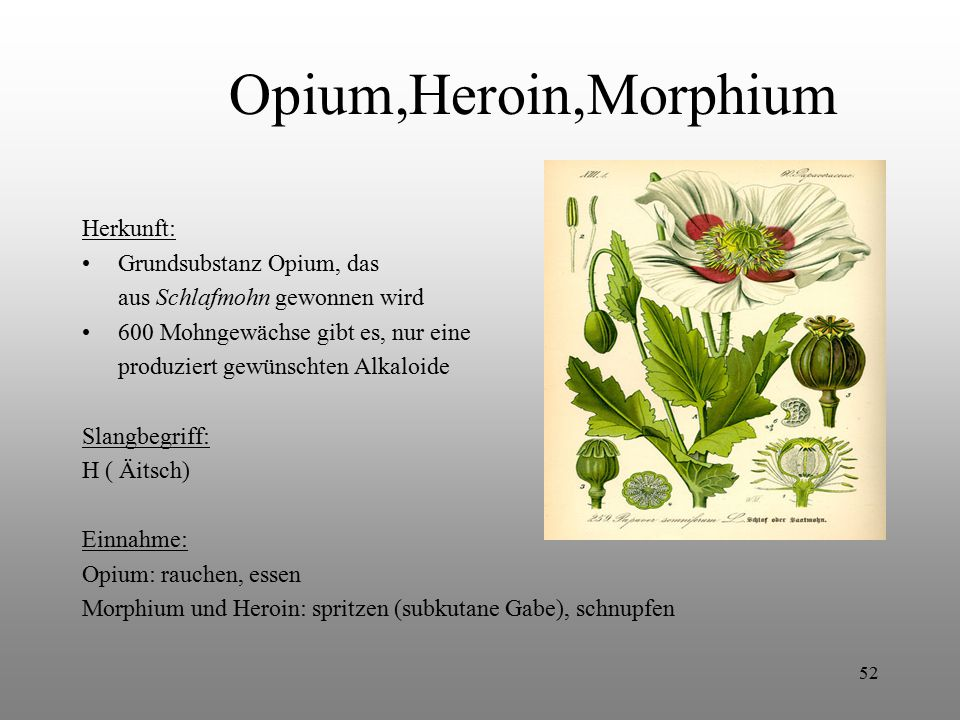 Opium,Heroin,Morphium Herkunft: Grundsubstanz Opium, das