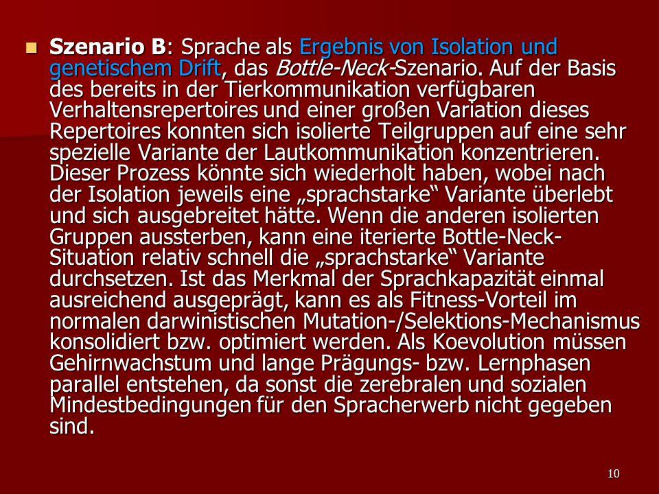 Szenario B: Sprache als Ergebnis von Isolation und genetischem Drift, das Bottle-Neck-Szenario.