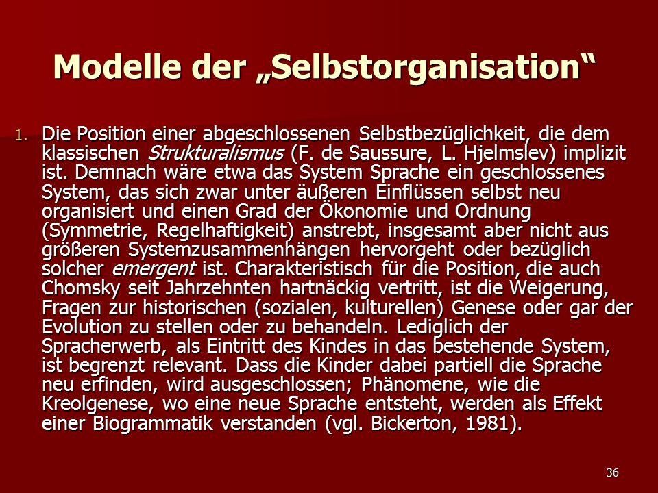 """Modelle der """"Selbstorganisation"""