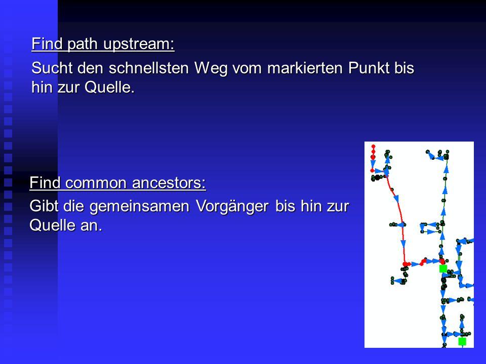 Find path upstream: Sucht den schnellsten Weg vom markierten Punkt bis hin zur Quelle. Find common ancestors: