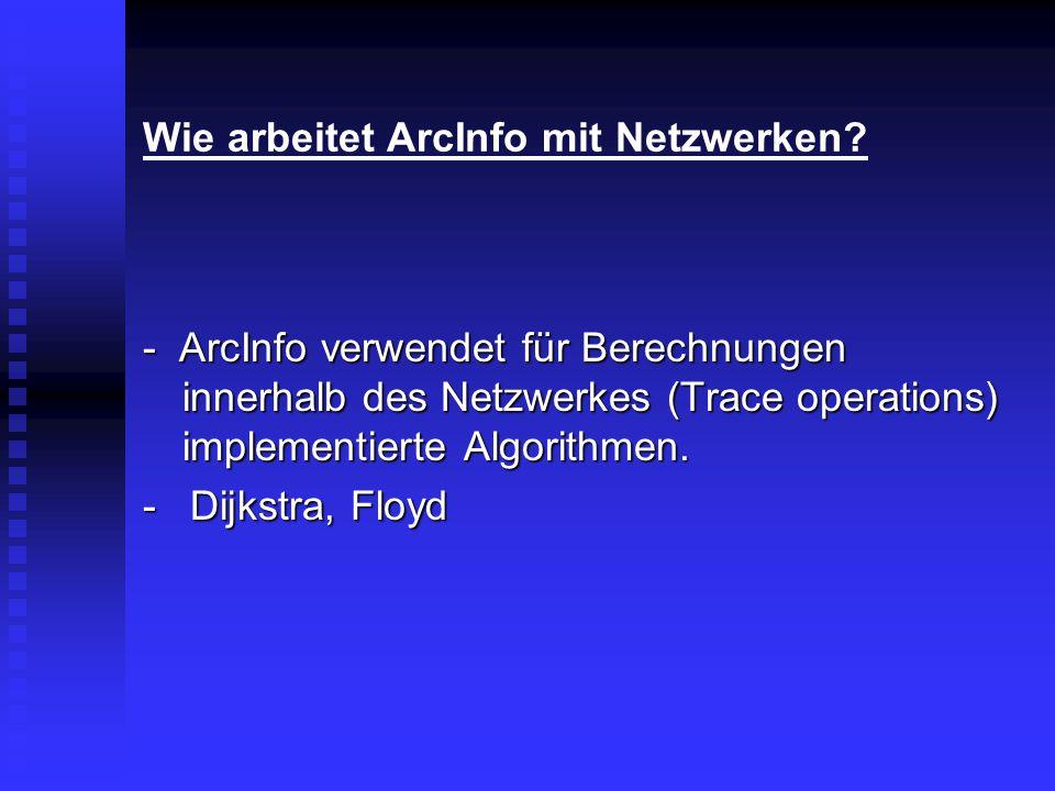 Wie arbeitet ArcInfo mit Netzwerken