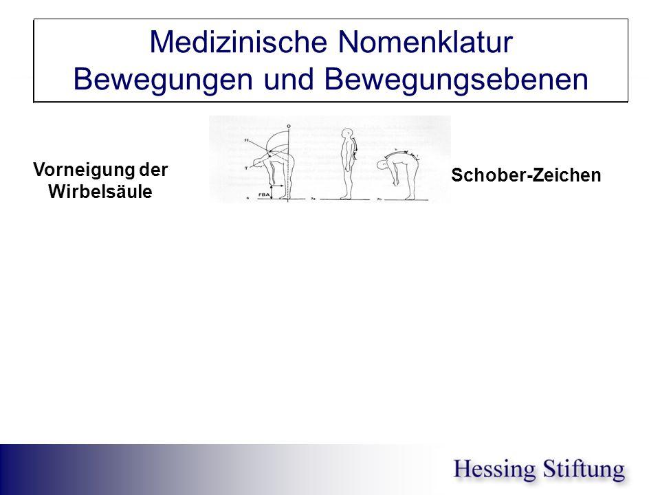 WS Inkl/Reklin Schober