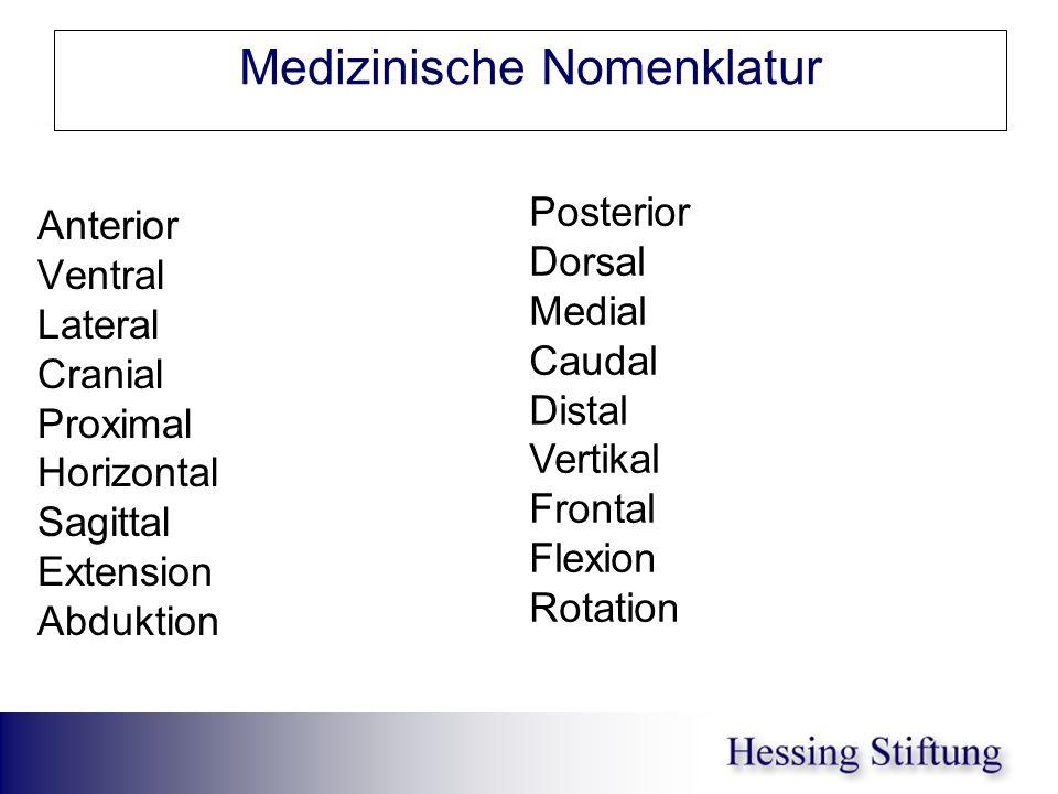 Medizinische Nomenklatur