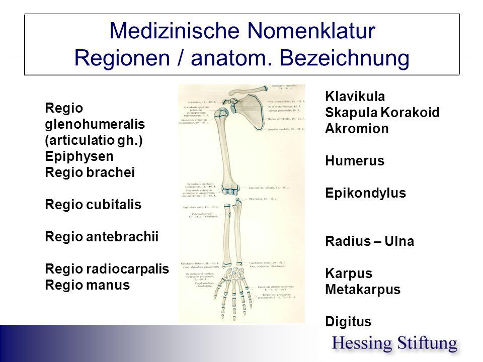 Medizinische Nomenklatur Regionen / anatom. Bezeichnung