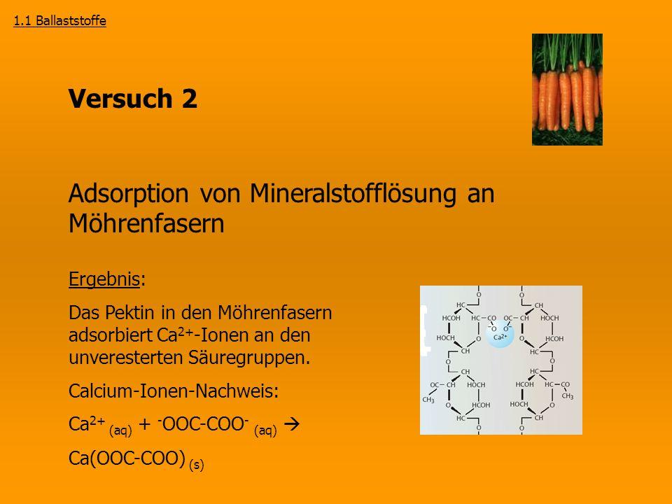 Adsorption von Mineralstofflösung an Möhrenfasern