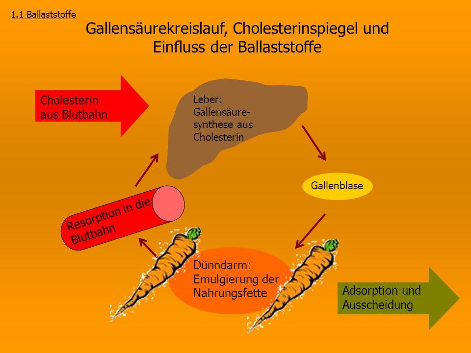 1.1 Ballaststoffe Gallensäurekreislauf, Cholesterinspiegel und Einfluss der Ballaststoffe.