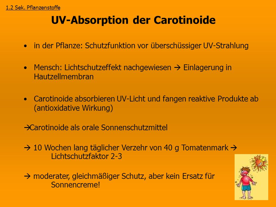 UV-Absorption der Carotinoide