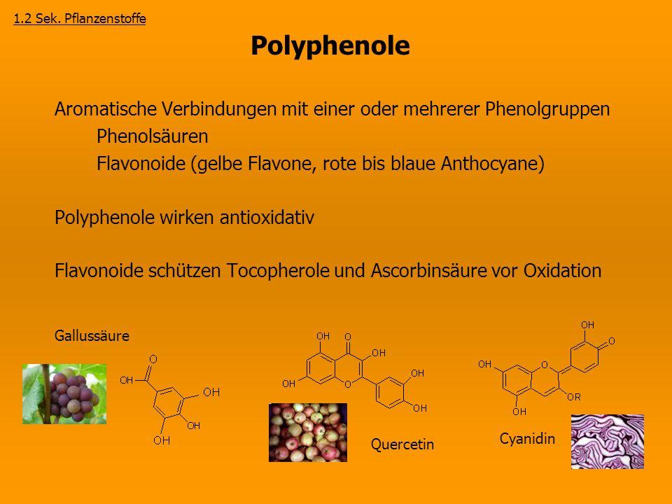 1.2 Sek. Pflanzenstoffe Polyphenole. Aromatische Verbindungen mit einer oder mehrerer Phenolgruppen.