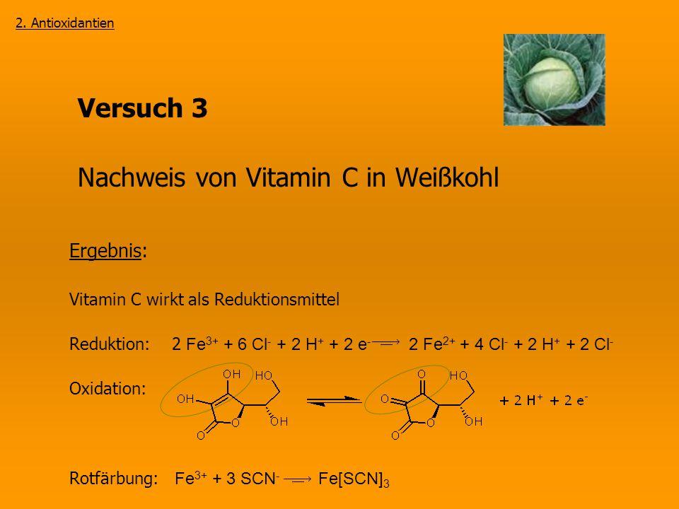 Nachweis von Vitamin C in Weißkohl