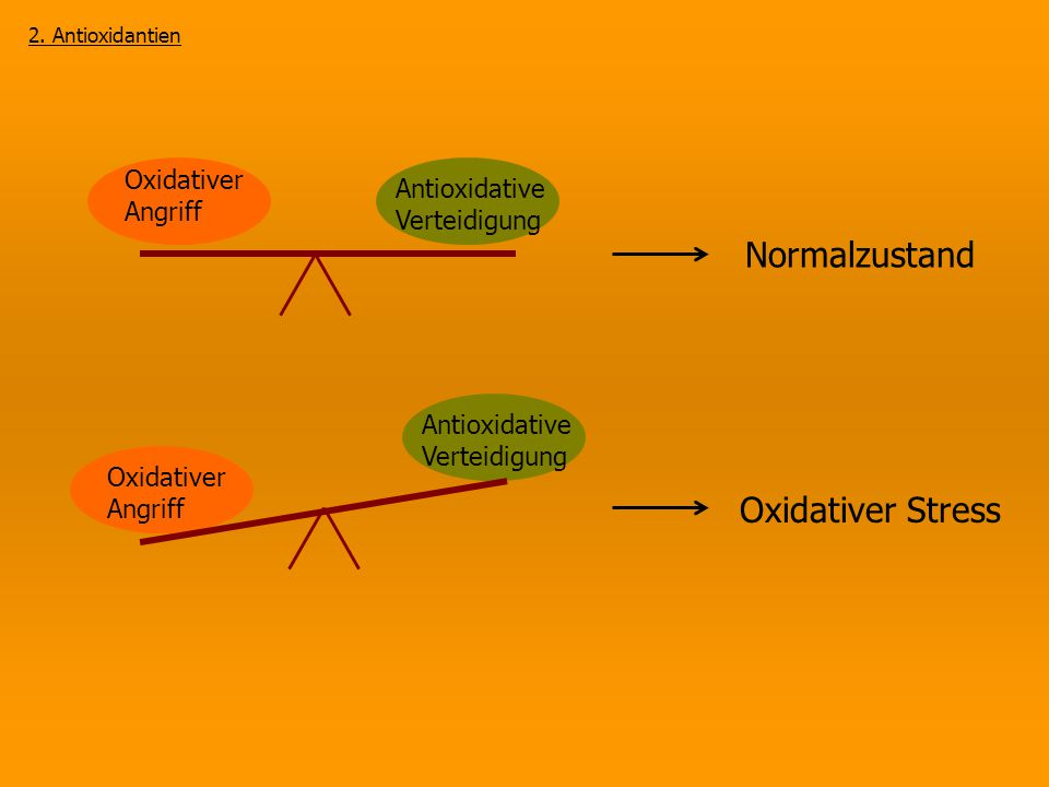 Normalzustand Oxidativer Stress Oxidativer Angriff